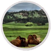 Wind Cave Bison Round Beach Towel