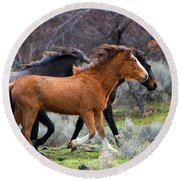 Round Beach Towel featuring the photograph Wind In The Manes by Mike Dawson