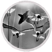 Round Beach Towel featuring the photograph Wind Swept Bw by Jan Amiss Photography