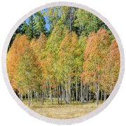 Windblown Aspen Round Beach Towel