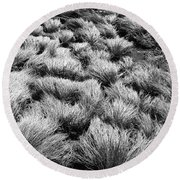 Windblown Grass Round Beach Towel