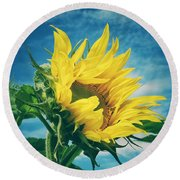 Windblown  Round Beach Towel by Karen Stahlros