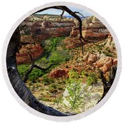 Round Beach Towel featuring the photograph Window by Chad Dutson