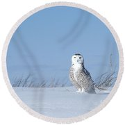 Windswept Plains Round Beach Towel by Heather King