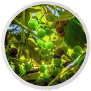 Wine On The Vine Round Beach Towel
