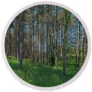 Wingate Prairie Veteran Acres Park Pines Crystal Lake Il Round Beach Towel