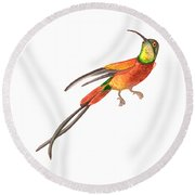 Round Beach Towel featuring the painting Winged Jewel 6, Watercolor Tropical Rainforest Hummingbird Red, Yellow, Orange And Green by Audrey Jeanne Roberts