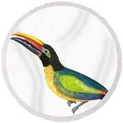 Round Beach Towel featuring the painting Winged Jewels 2, Watercolor Toucan Rainforest Birds by Audrey Jeanne Roberts