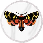 Round Beach Towel featuring the painting Winged Jewels 5, Watercolor Moth Black Yellow Orange And Red Tropical by Audrey Jeanne Roberts