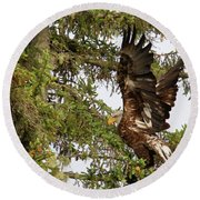 Round Beach Towel featuring the photograph Winging-it Up The Tree 1 by Debbie Stahre