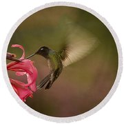 Round Beach Towel featuring the photograph Wings In Motion 3 by Anne Rodkin