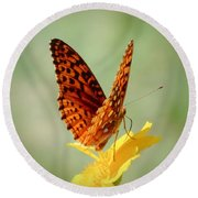 Wings Up - Butterfly Round Beach Towel