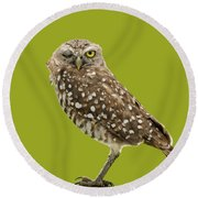 Round Beach Towel featuring the photograph Winking Owl by Bradford Martin