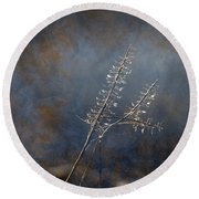 Round Beach Towel featuring the photograph Winter 365-296 by Inge Riis McDonald