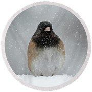 Winter - 365-337 Round Beach Towel by Inge Riis McDonald