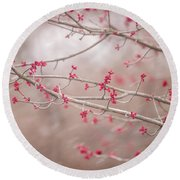 Round Beach Towel featuring the photograph Winter And Spring by Terry DeLuco