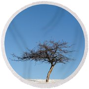 Winter At The Crabapple Tree Round Beach Towel
