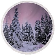 Winter Beauty Round Beach Towel by Sheila Ping