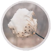 Winter Beauty Round Beach Towel