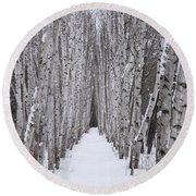 Winter Birch Path Round Beach Towel