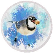 Winter Bluejay Round Beach Towel by Darren Fisher
