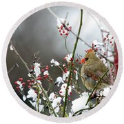 Winter Cardinal Round Beach Towel by Gary Wightman