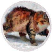 Winter Cat Round Beach Towel by Sergey Lukashin