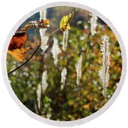 Round Beach Towel featuring the photograph Winter Color by George Randy Bass