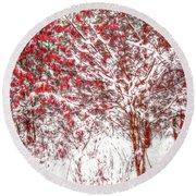 Winter Color  Round Beach Towel by Randy Steele
