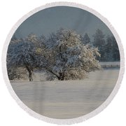 Winter Delight Round Beach Towel