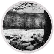 Round Beach Towel featuring the photograph Winter Dreary by Bill Wakeley