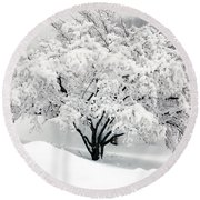 Winter Fluff Round Beach Towel by Richard Ortolano