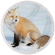 Winter Fox Round Beach Towel