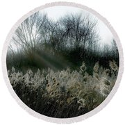 Round Beach Towel featuring the photograph Winter Fringe by Kendall McKernon