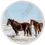 Winter In Sand Wash Basin - Wild Mustangs Round Beach Towel