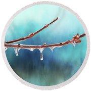 Winter Magic - Gleaming Ice On Viburnum Branches Round Beach Towel