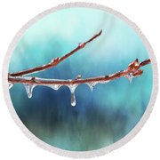 Winter Magic - Gleaming Ice On Viburnum Branches Round Beach Towel