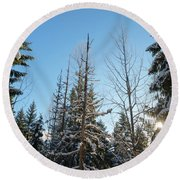 Winter Morning In The Forest Round Beach Towel