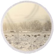 Winter Playground Round Beach Towel