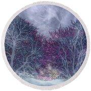 Round Beach Towel featuring the photograph Winter Purple by Nareeta Martin