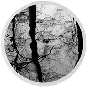 Round Beach Towel featuring the photograph Winter Reflection by Inge Riis McDonald