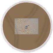 Winter Sanderling Round Beach Towel