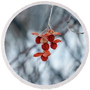 Winter Seeds Round Beach Towel