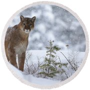 Winter Storm Round Beach Towel