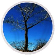 Winter Tree Round Beach Towel