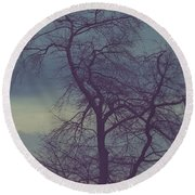 Round Beach Towel featuring the photograph Winter Tree by Shane Holsclaw