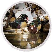 Winter Visitors - Wood Ducks Round Beach Towel