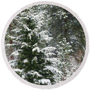 Round Beach Towel featuring the photograph Winter Woodland by Will Borden