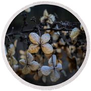 Winterized Hydrangea Round Beach Towel
