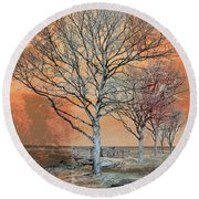 Round Beach Towel featuring the photograph Winter's Dawn by Shawna Rowe